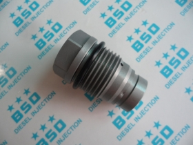 Common Rail Pressure Relief Valve 1110010024