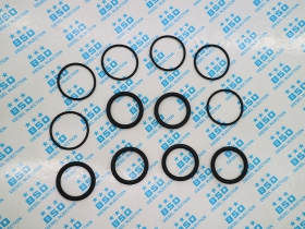 Injector 0445120059 Sealing O-Ring (set)